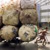 China podría vetar la importación de algunos productos