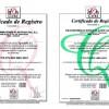 Transformaciones Plásticas Ital S.L obtiene certificado ISO 14001
