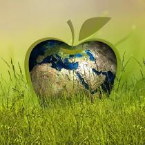 Una economía circular de plásticos reducirá la contaminación