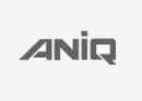 01_aniq