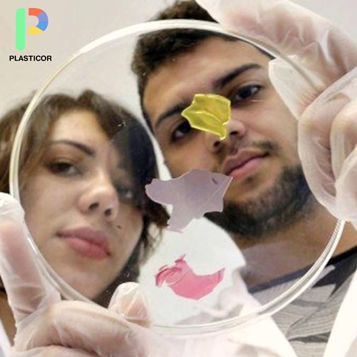 Estudiantes brasileños desarrollan envases de bioplástico que advierten cuando la comida se echó a perder