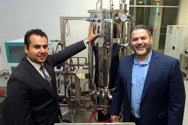 Buscan crear bolsas plásticas utilizando bacterias
