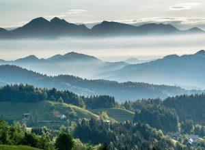 Bio-Fed contribuye con el Pacto Verde Europeo 2030