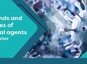 AIMPLAS organiza la primera edición de una jornada internacional sobre agentes biocidas y su aplicación en el sector de los plásticos