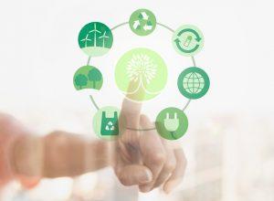 Verdades sobre la biodegradabilidad