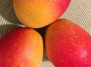 Bioplástico elaborado con nanocelulosa y mango para mejorar la conservación de los alimentos